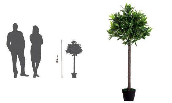 PAPERFLOW Kunstpflanze Olivenbaum , Höhe: 1250 mm